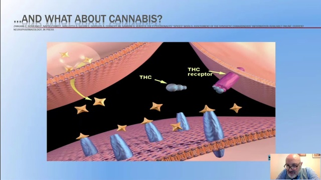 Cannabinoidi - Professore Fabrizio Schifano